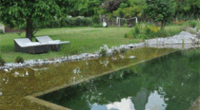 La piscine éco l'eau