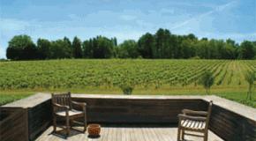 Terrasse : carrelages et dallages… mode d'emploi